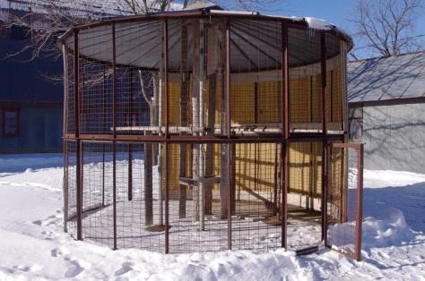 how to build a wire corn crib | tiffany94gs